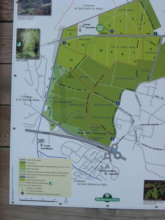 """Le secteur des Vignes à St Aubin n'est pas loin du tracé de la """"future déviation"""" du Taillan St Médard et st Aubin même combat! Elles aiment les espaces naturels et savent les mettre en valeur"""