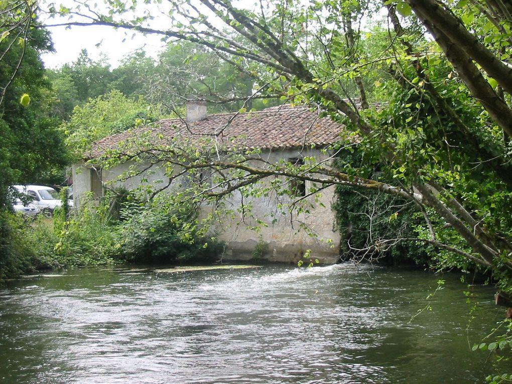 Album - biodiversite-le-Moulin-de-Moulinat zone des Sources Haillan