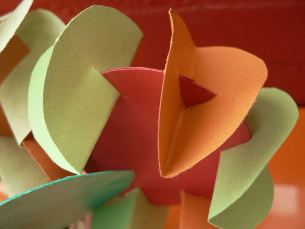 Album - Fleurs-en-carton-fin