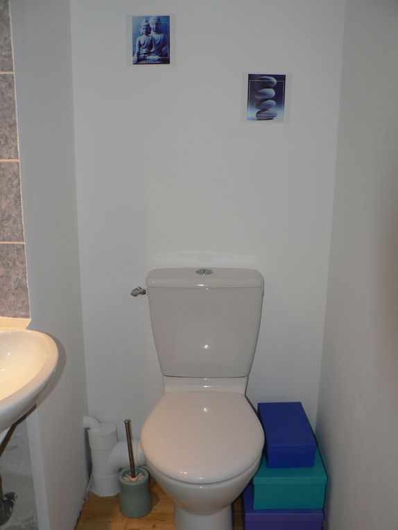 Album - Toilettes-plus-fun