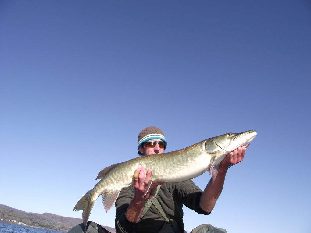 Album - Musky-on-Fly