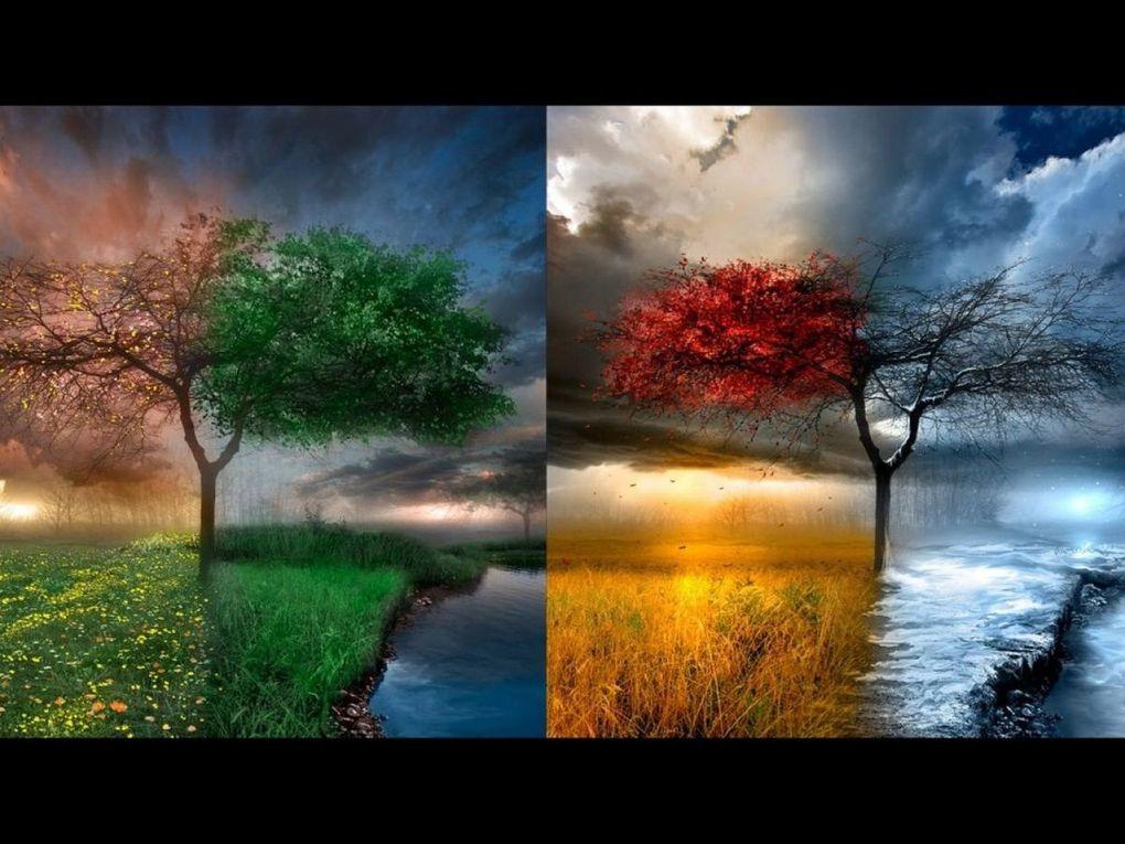 Le temps d'une respiration, le temps de l'instant présent, le temps d'être, tout simplement...