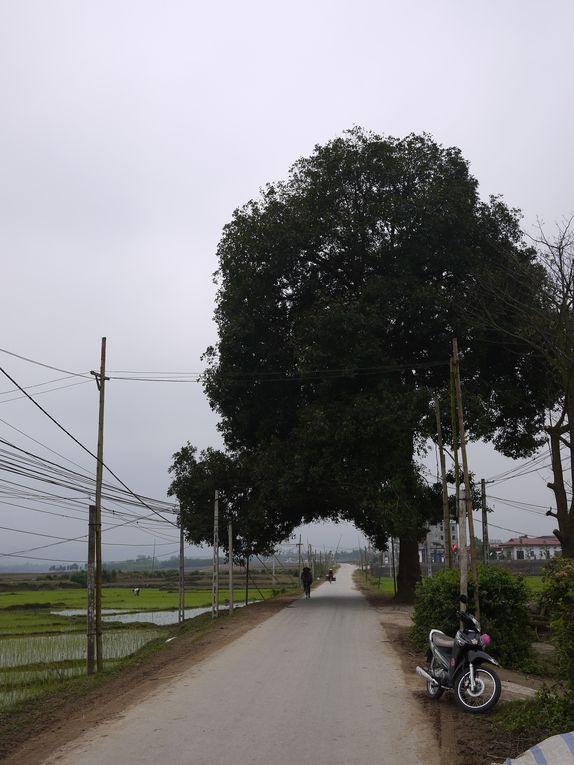 Album - Parc National de Bavi (Vietnam)