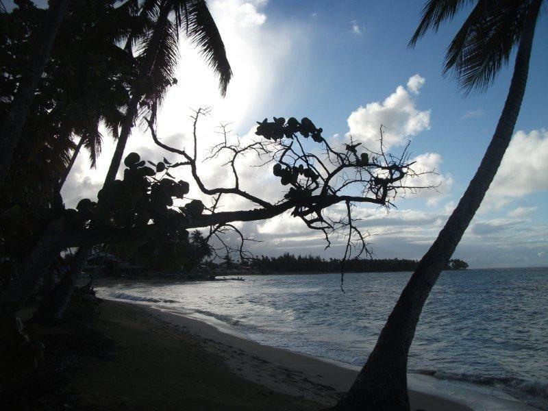 Album - Republique-Dominicaine