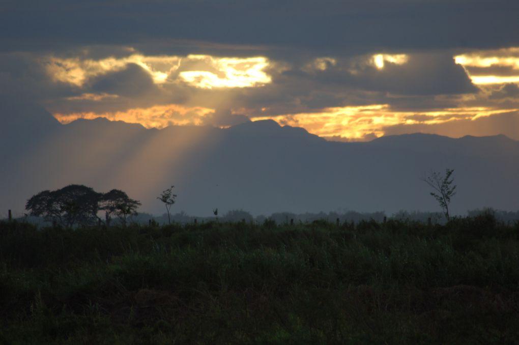 Quelques couchés de soleil et prises de vues diverses sur la plaine de Candaba. Aucune photo n'est retouchée.....