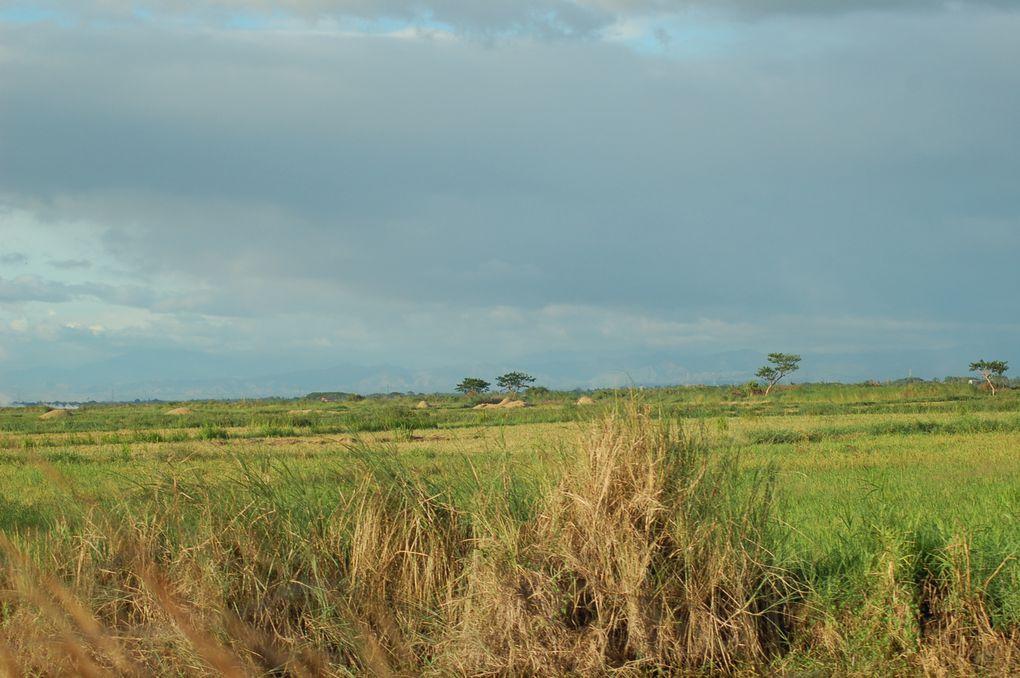 En ballade avec mes deux oiseaux préférés!!!! Lieux calme et reposant, loin des bruits des jeepneys, triclycles et de la ville.