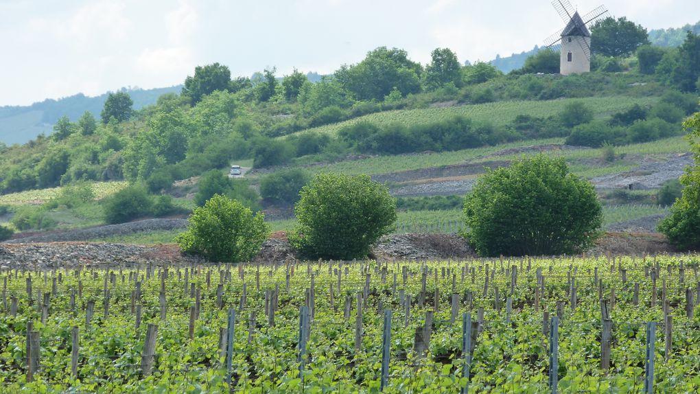 Album - Fondus-de-Bourgogne