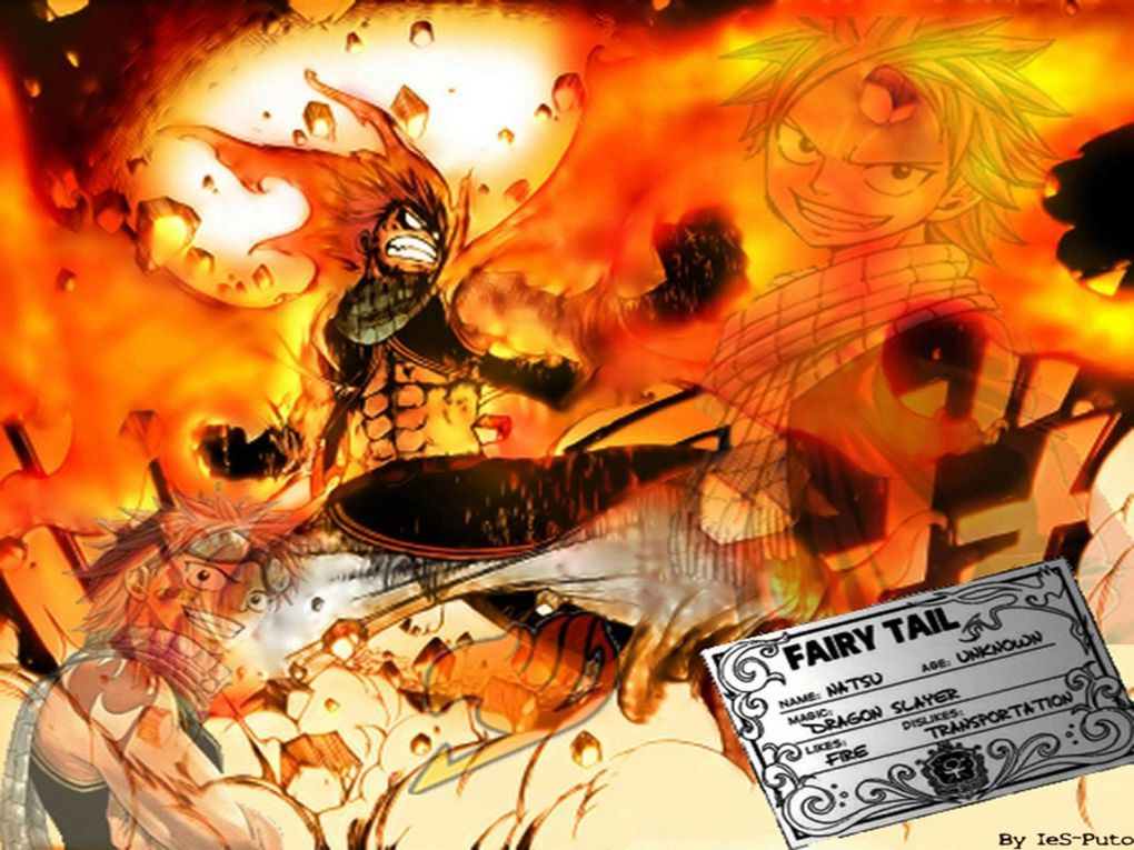 Album - Fairy Tail Wallpapers