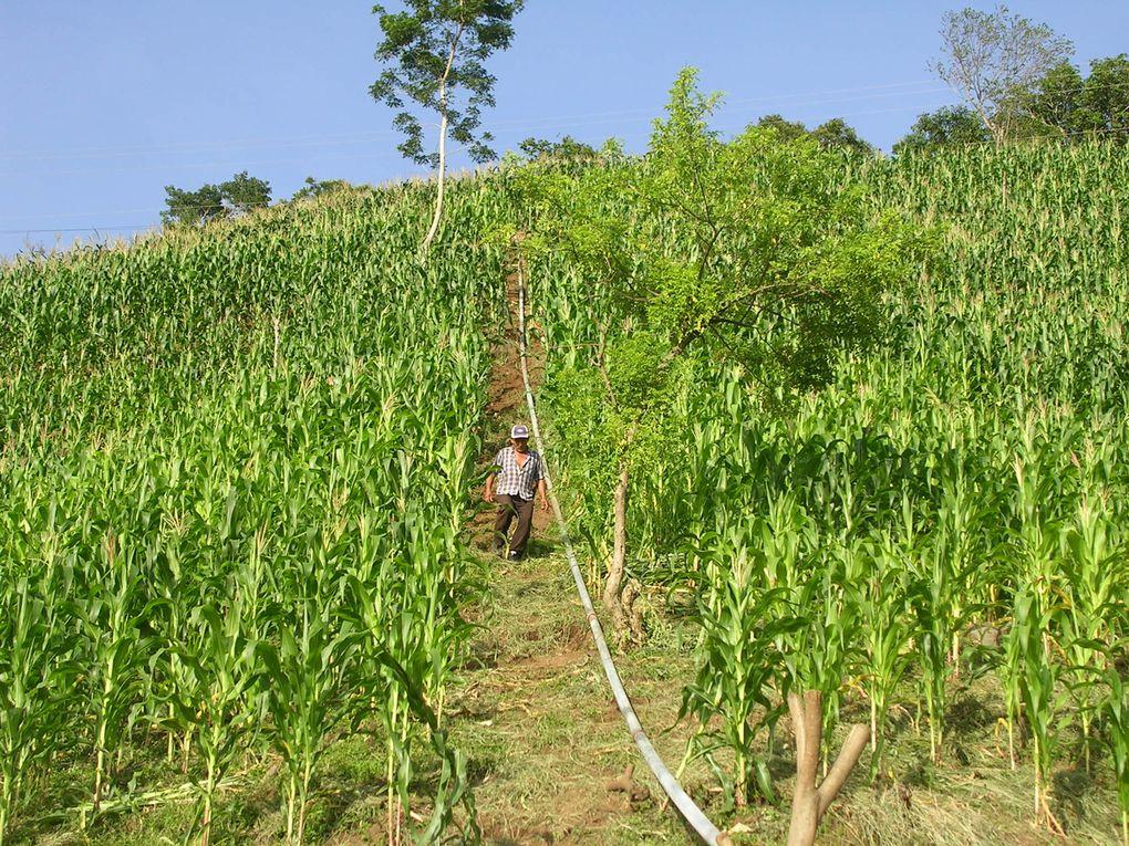 Algunas de las obras que se han realizado en comunidades para mejorar el acceso al agua potable y el saneamiento.