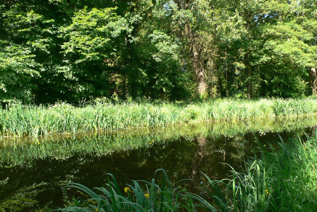 Album - Canal-de-Nantes-a-Brest--Suite-