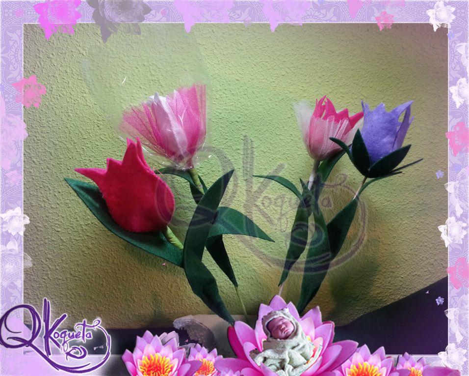 Album - Flores