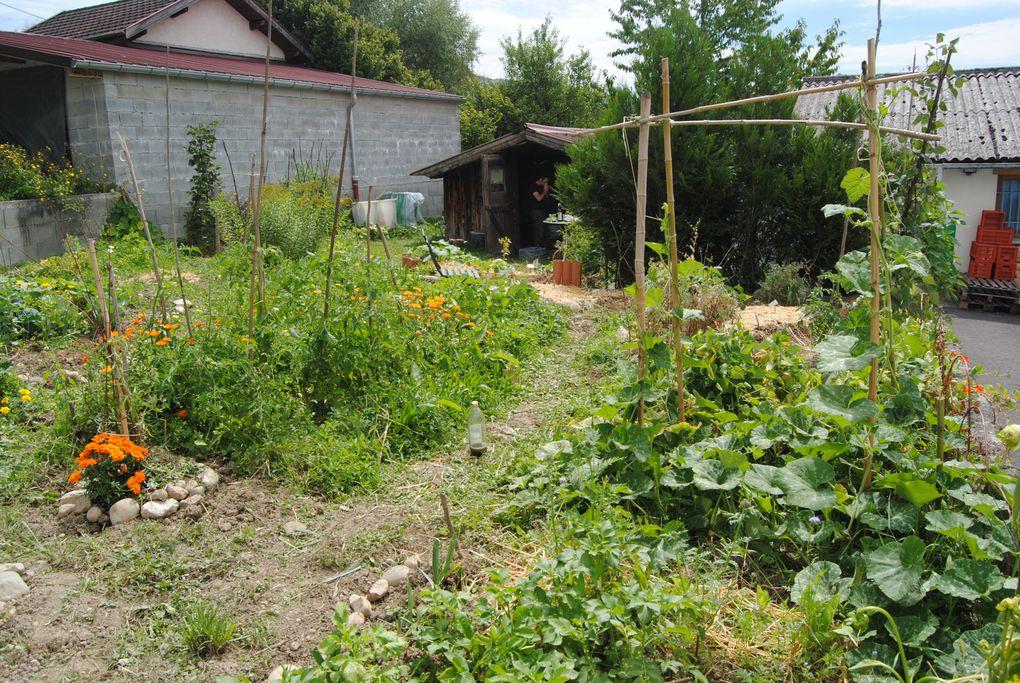jardin partagélieu: dans la zone industrielle de Belley, Depuis: Mai 2011,première année