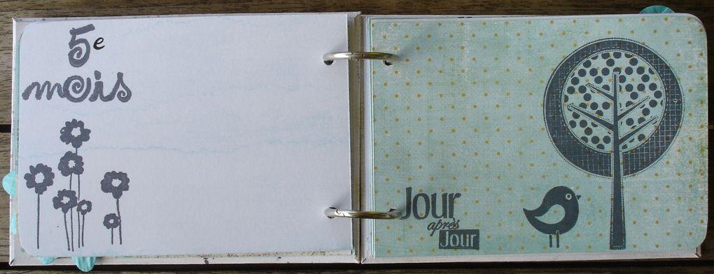 Album - Petit-carnet-de-grossesse-pour-la-deuxieme-grossesse-de-Sandra