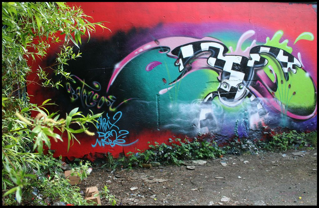 Sessions graffiti / Street Art avec d'autres artistes