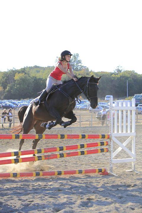 Concours équitation au centre Capricorne à Saint-LysPartie 2