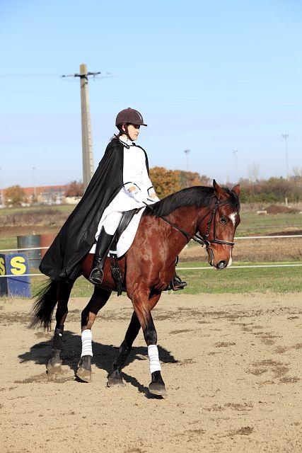 Dans cet album sont réunies les trois épreuves du matin du concours de dressage au poney club de Léguevin le 11 déc 2011