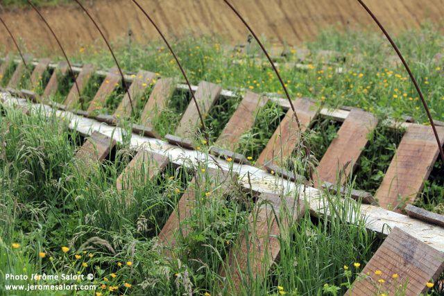 L'escargot du fousseret.Ferme d'héliciculture en Haute Garonne.