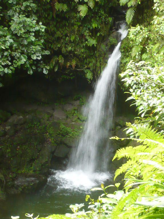 Album - Dominica