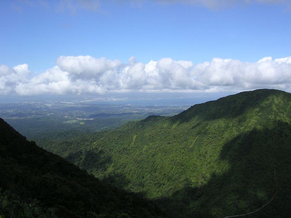 Album - Guadeloupe-Basse-Terre