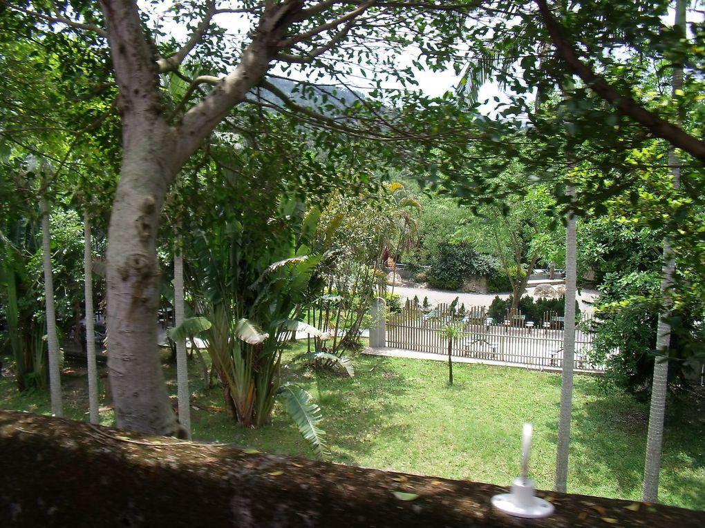 Zoo de Taipei