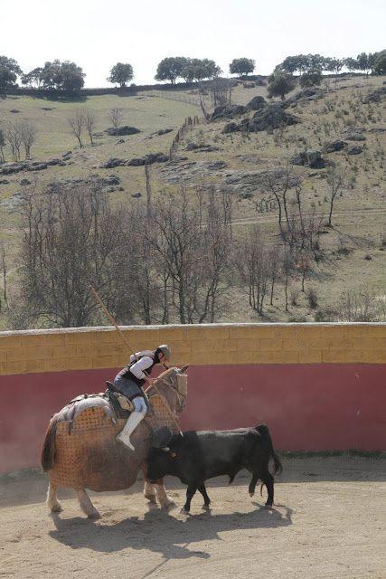 Album - 2012 MADRID OLIVENZA