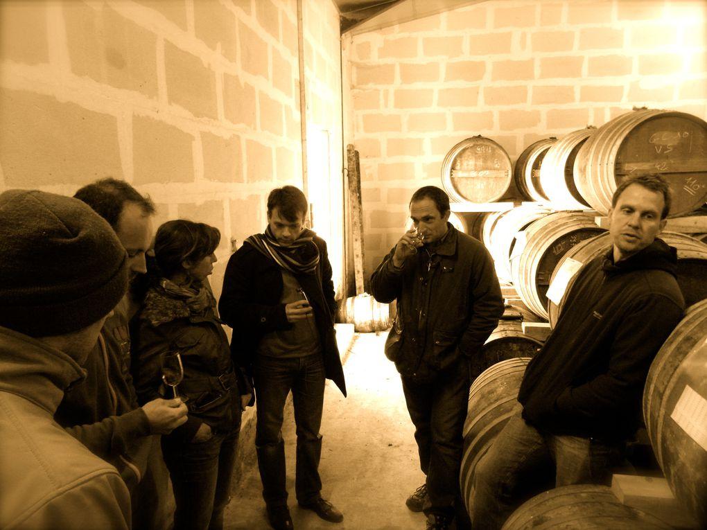 Le Maine Verret à Verrières en Grande Champagne – 45 ha de vignes conduites en cordons hauts taillés mécaniquement avec repasse manuelle rapide. Un grand terroir où sont élaborés de très grands cognacs...