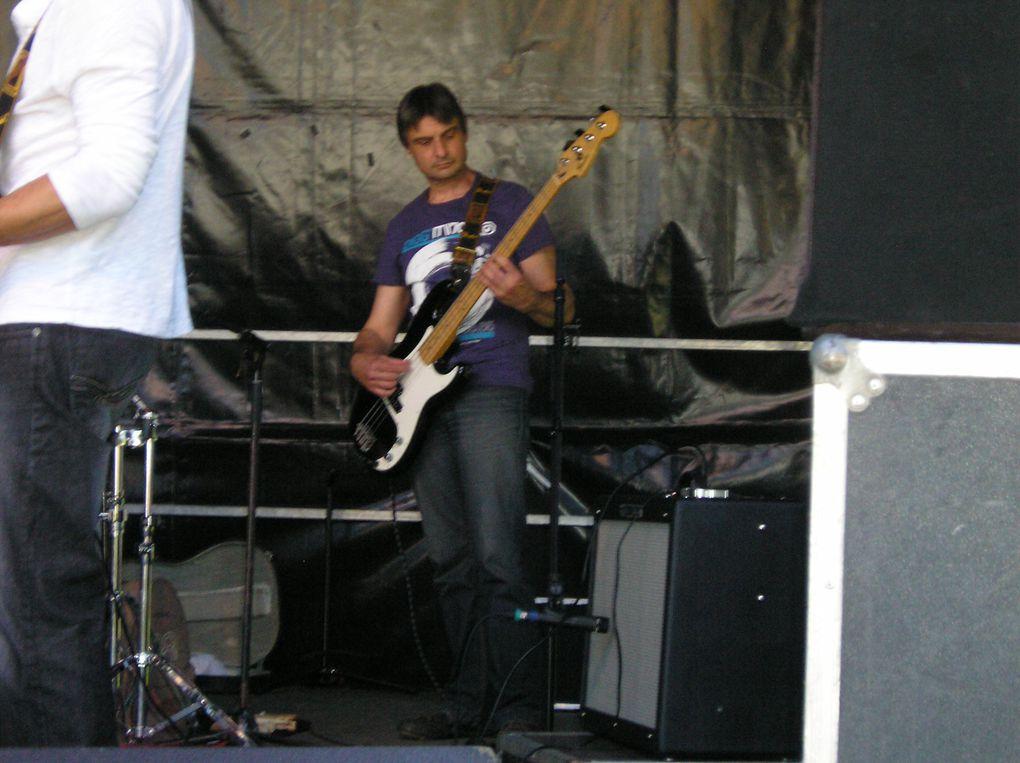 Printemps 2011 berges du gave a JURANCON