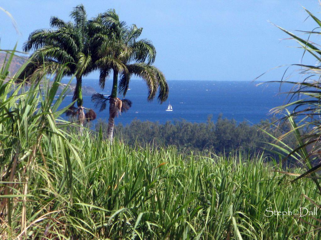 Inscrite au patrimoine mondiale de l'nesco, L'île offre de multiples paysages....