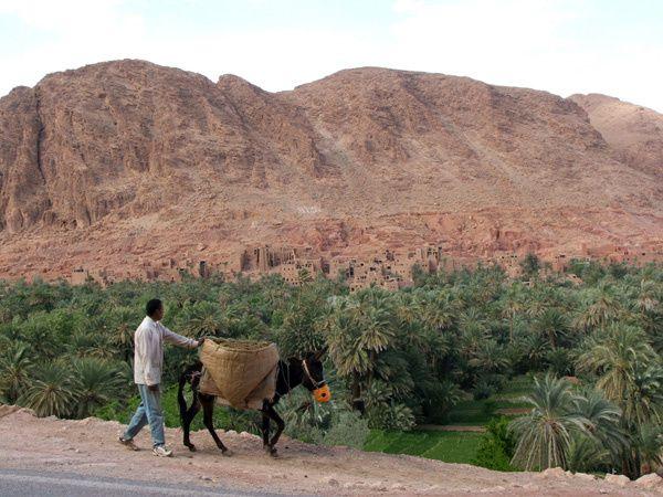 Album - Voyageur du Maroc
