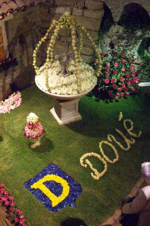 Photos prises le 14 juilletde cette année dans lesarènes de Doué la Fontaineoù se tiennent jusqu'au 16les journées de la Rose.