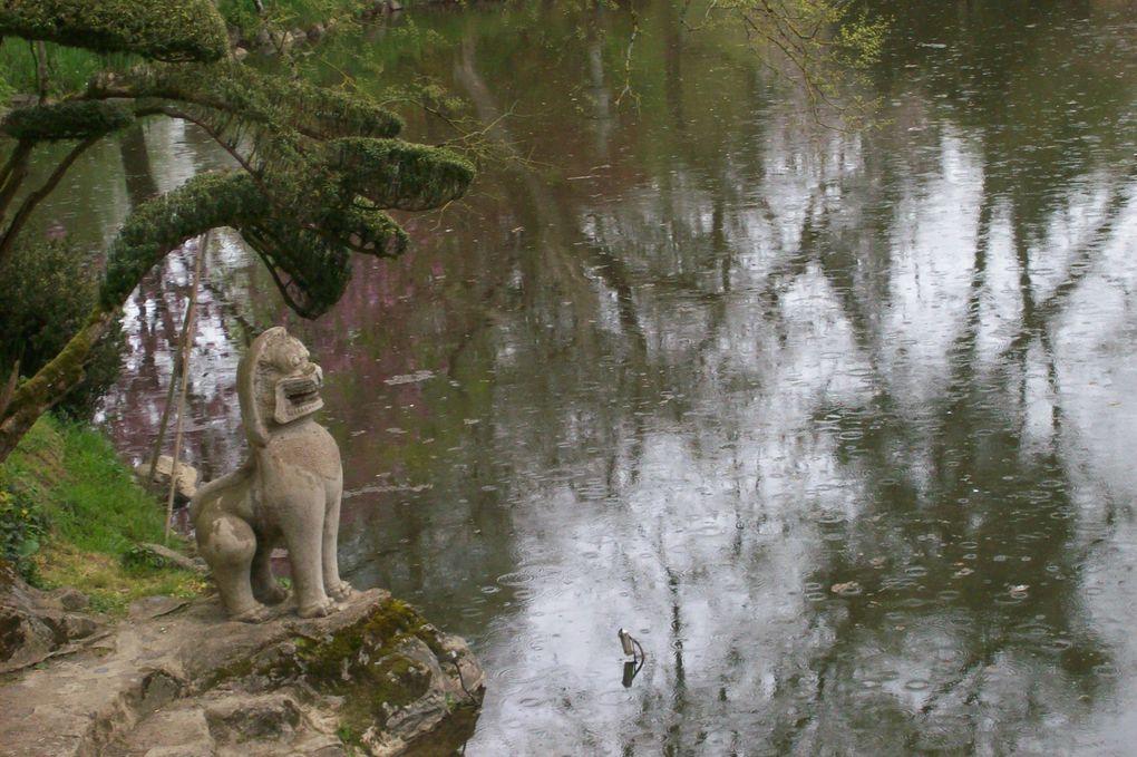 Ces photos ont été prises le 27 avril2013 mais le parc oriental de Maulévrier est magnifiqe en toute saison et chaque visite qu'on lui rend offre des surprises !
