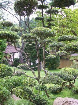 Ce parc se trouve tout prèsde Cholet. On peut le visiterde jour ou de nuit avec deslanternes !