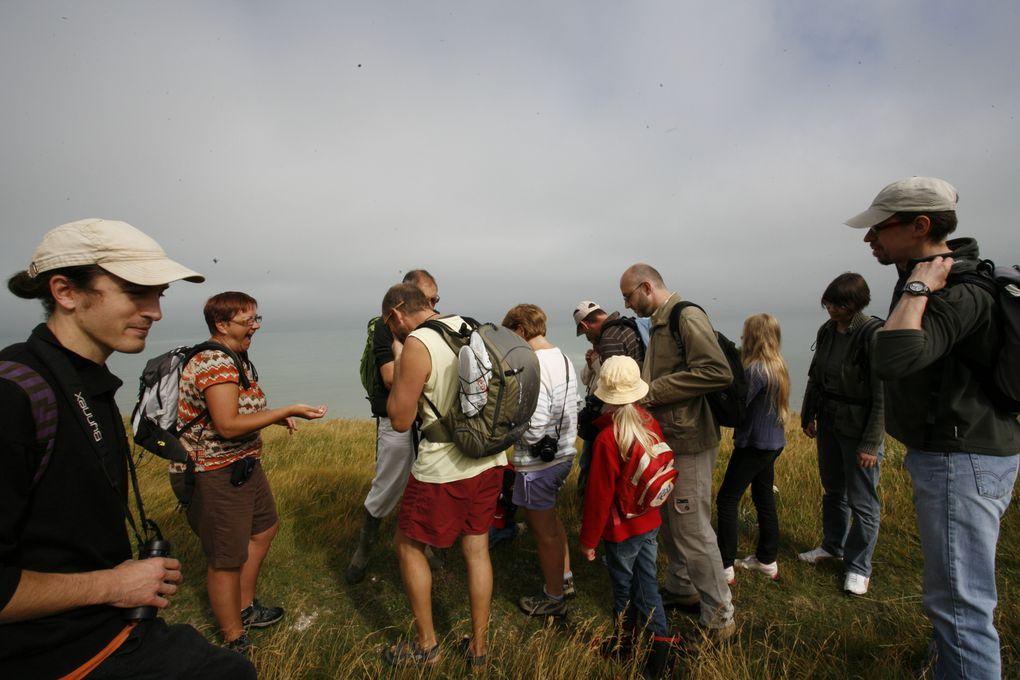 Superbe sortie organisé avec Olivier de Sens Naturel spécialiste des séjours et randonnées d'épanouissement et d'émerveillement, en connexion avec la nature, en Baie de Somme. Un pur moment de régal pour les petits et les grands.