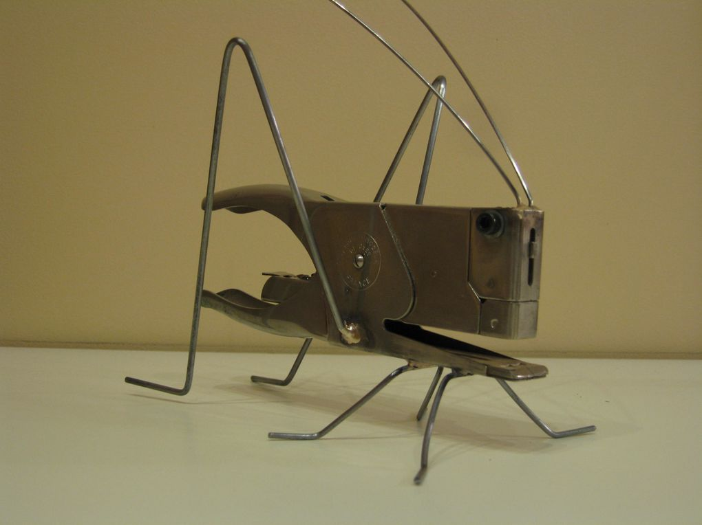 Album - les insectes