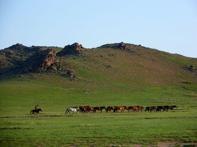 Album - Mongolie