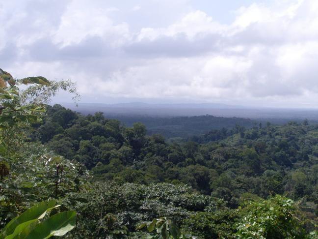 un peu de ma vie, juste pour vous faire découvrir la Guyane!