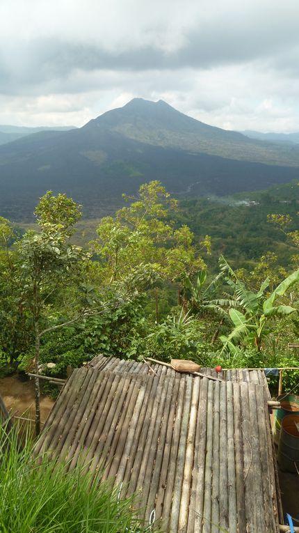 Album - Bali