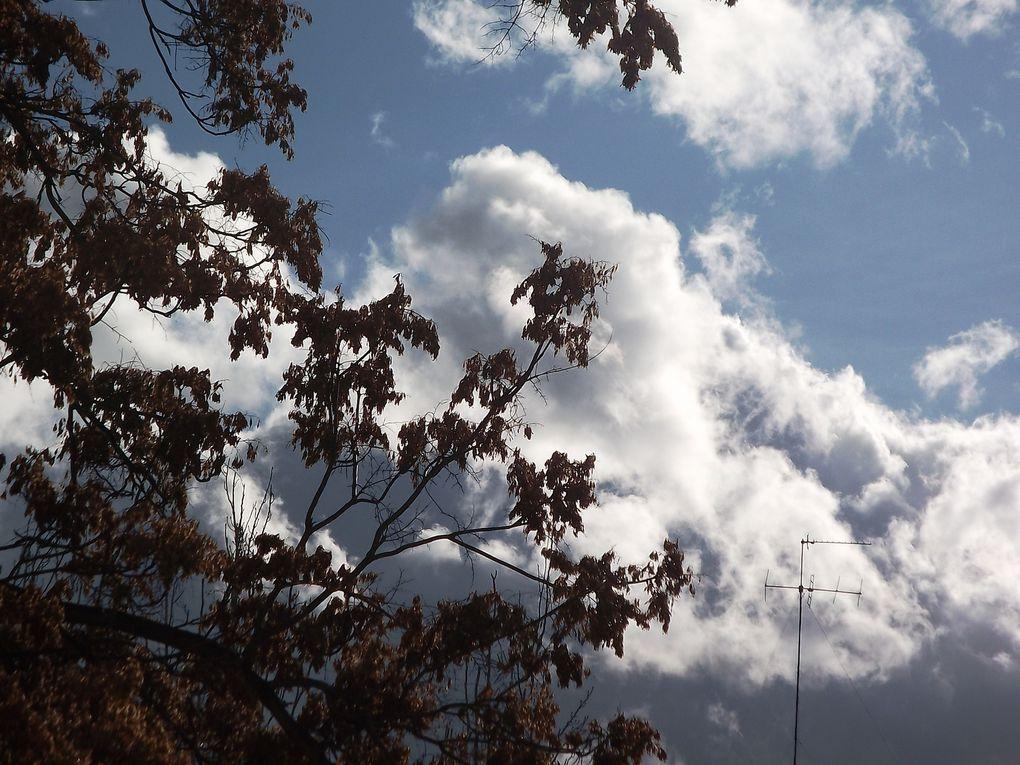 Album - Algunas-fotos-de-mi-barrio.--Zaragoza-
