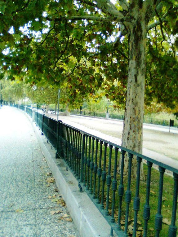 Album - B--San-Jose-y-Canal-Imperial--Zaragoza-