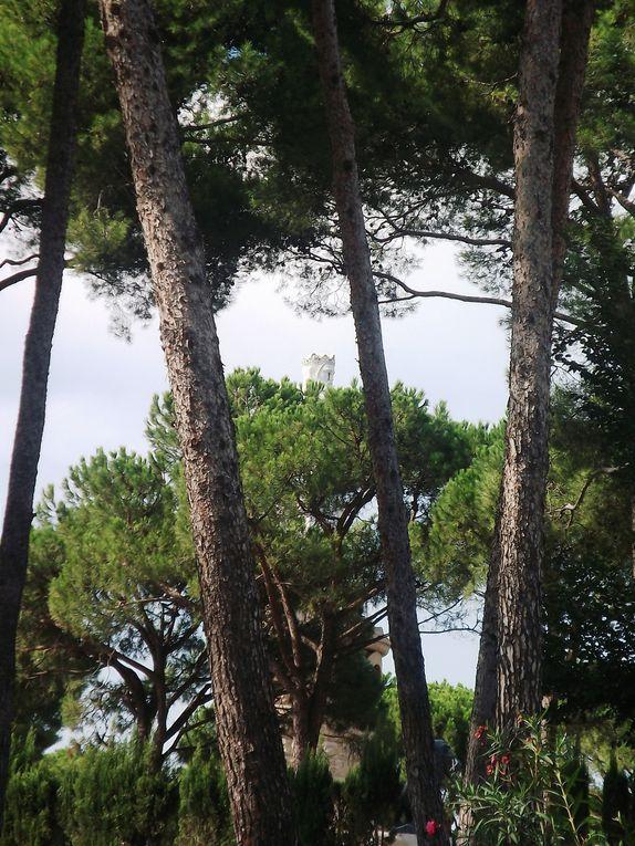 Album - Parque-J.A.-Labordeta.-Zaragoza-