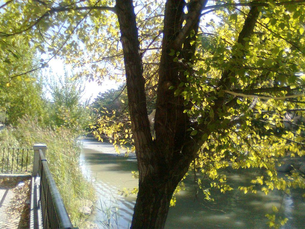 Album - Paseo-del-Canal--Zaragoza-