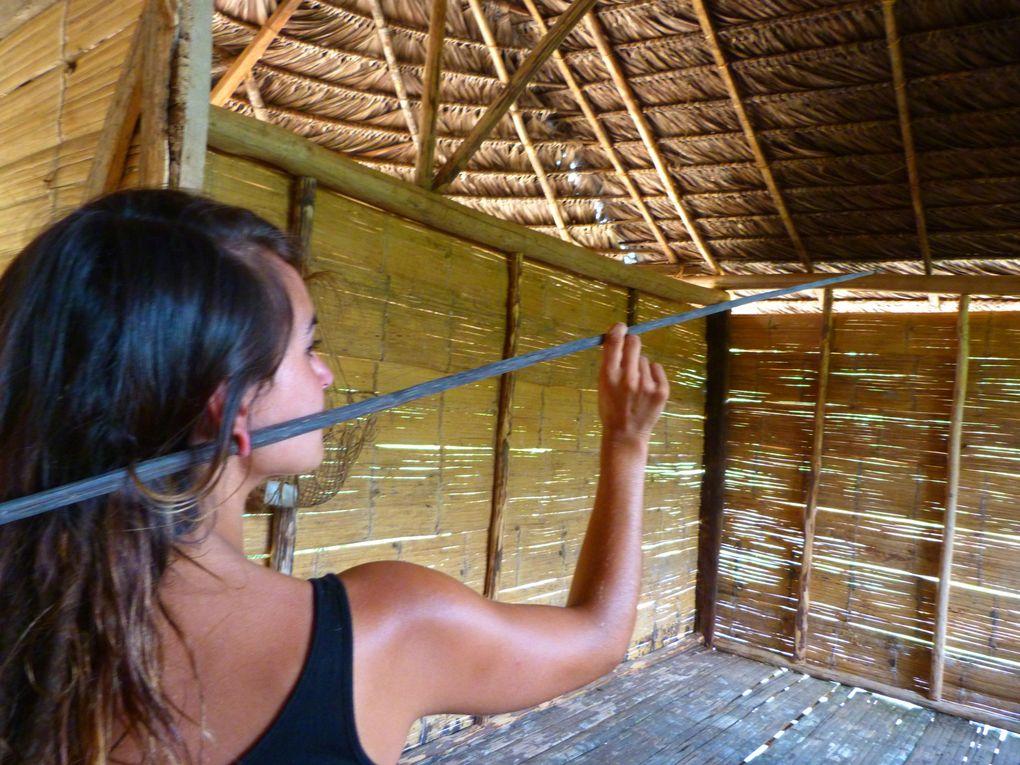 Photos du trip Amazonien au coeur de la jungle dans la tribu Waorani !!!