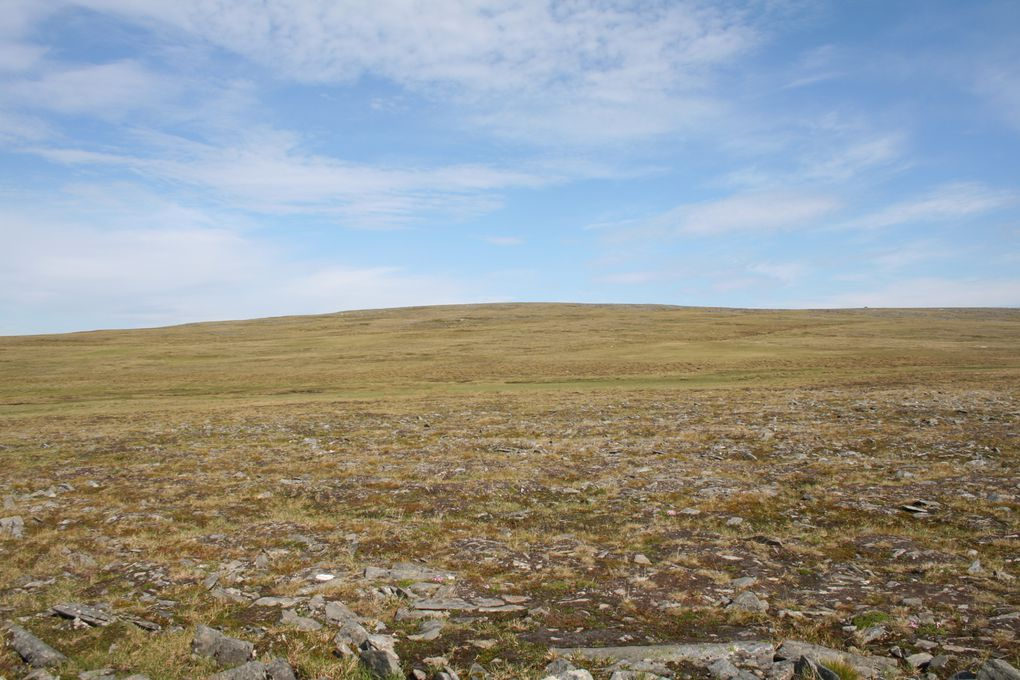 sarnes, nordkapp, midnight sun, the road, trondheim, peoples, the sky, and such