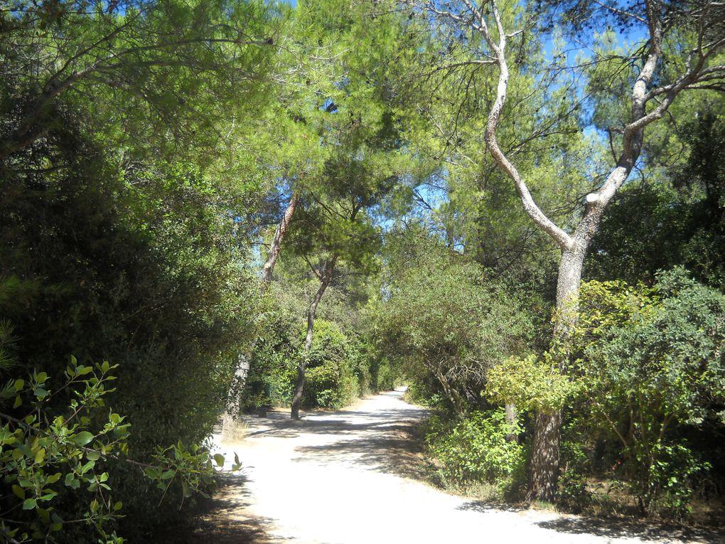 Venez découvrir le zoo de Montpellier, un endroit qui comblera de joie tous les amoureux de la nature et des animaux...