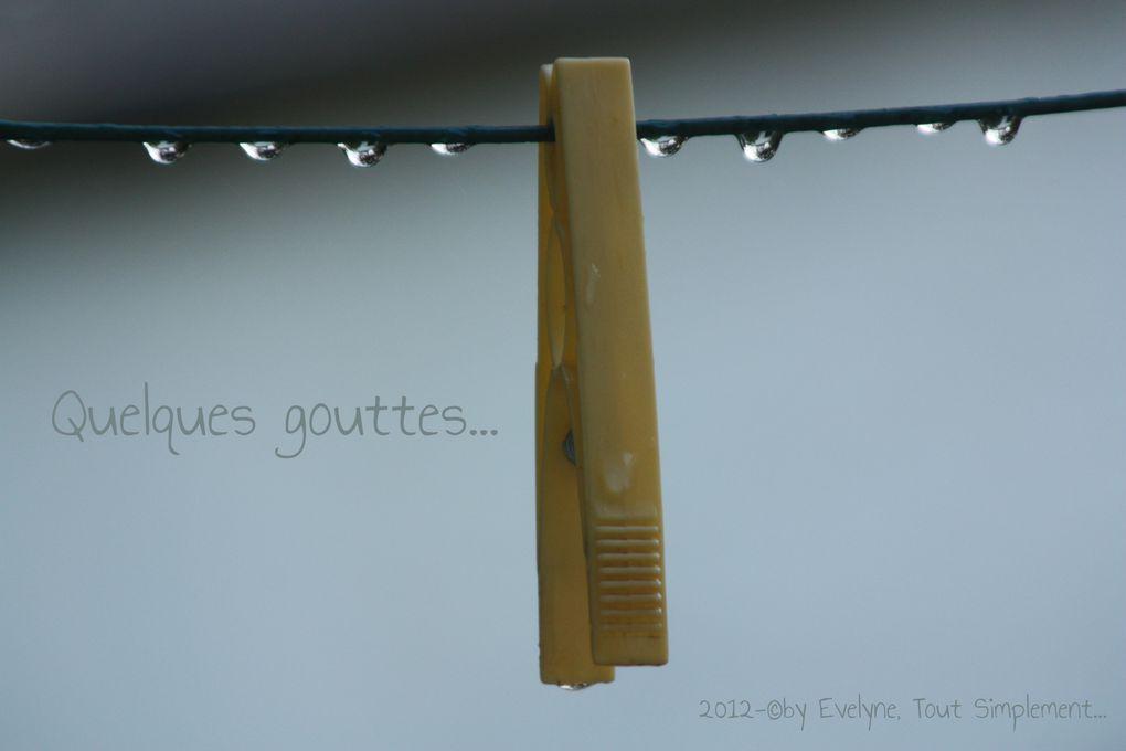 Album - Tout et n'importe Quoi..