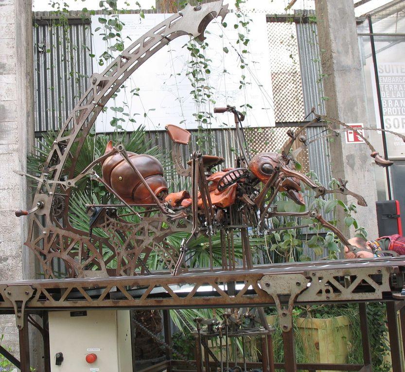 Sur L'île de Nantes , il y a de surprenantes machines ...