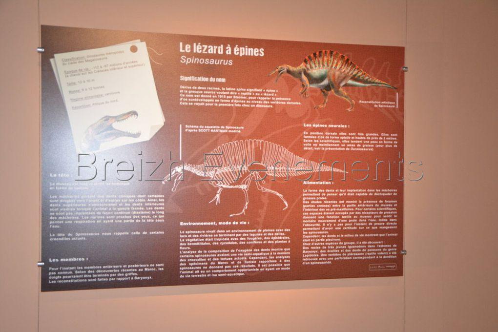 Album - tyrannosaures-Dinard