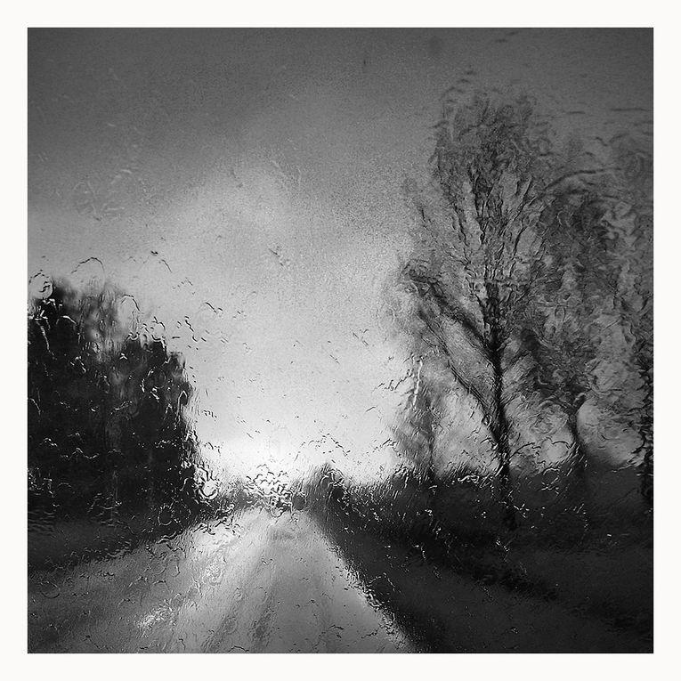 Album - 2013---Coupe-de-France---NB
