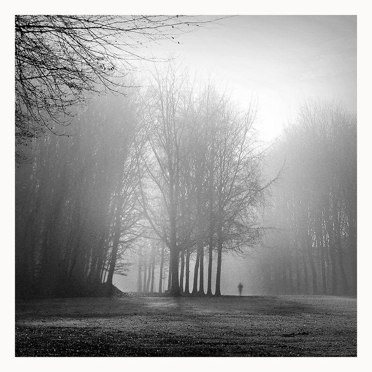 Album - Eliane-Villette