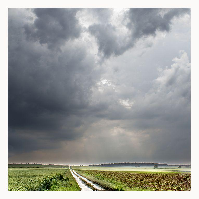 Album - Jean-Claude-Garreau
